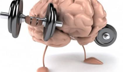domzaedno_brain
